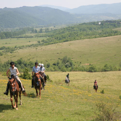 european riding holidays, Five of the Best… European Riding Holidays, In The Saddle