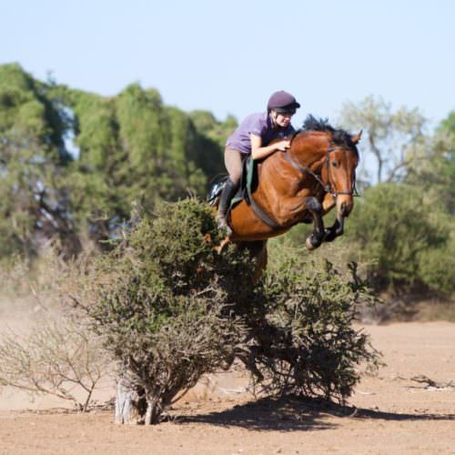 limpopo, Harriet Walker's African Adventure: Arriving at Limpopo, In The Saddle