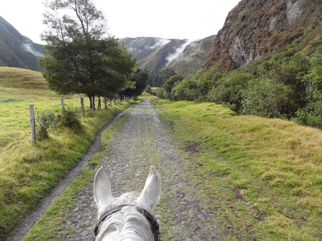 Abbie S Ecuador Blog Hacienda Zuleta In The Saddle