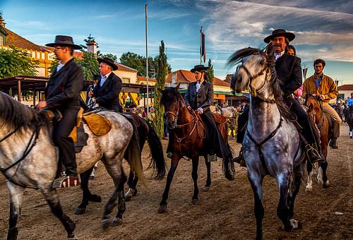 Golegã Horse Fair