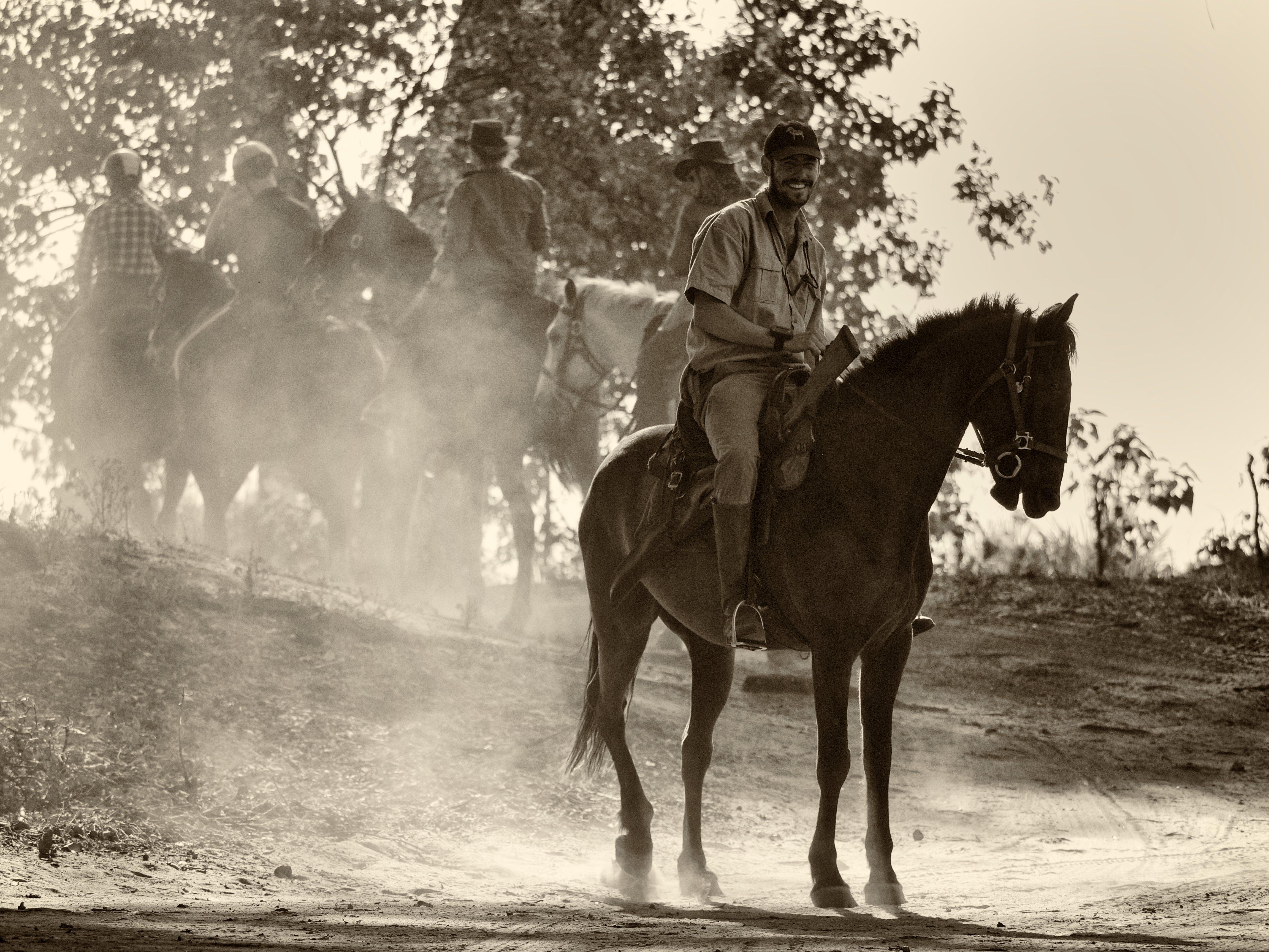 horses at kujwana