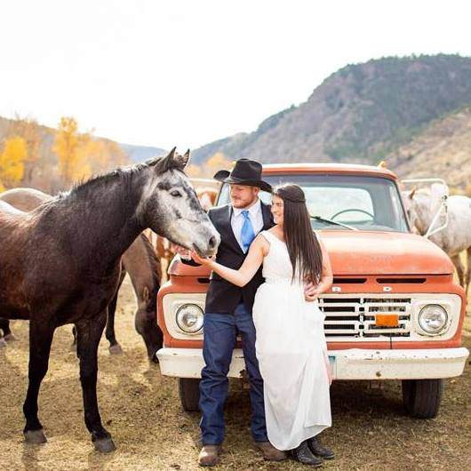 horses in montana