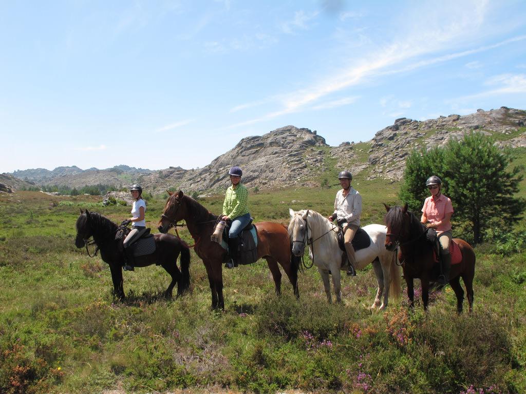 Ecotura-horseriding24