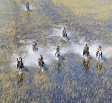 cantering on the floodplains at macatoo