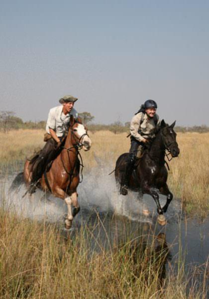 cantering in the okavango delta