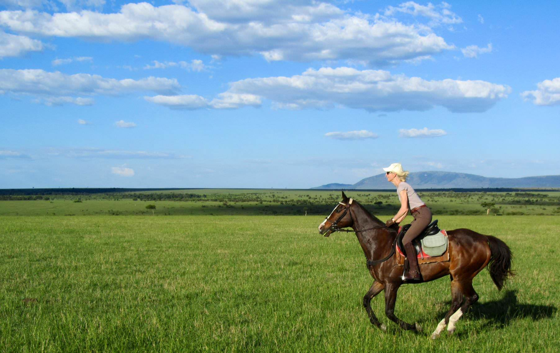 The horses are fit and raring to go, ready for upcoming safaris.