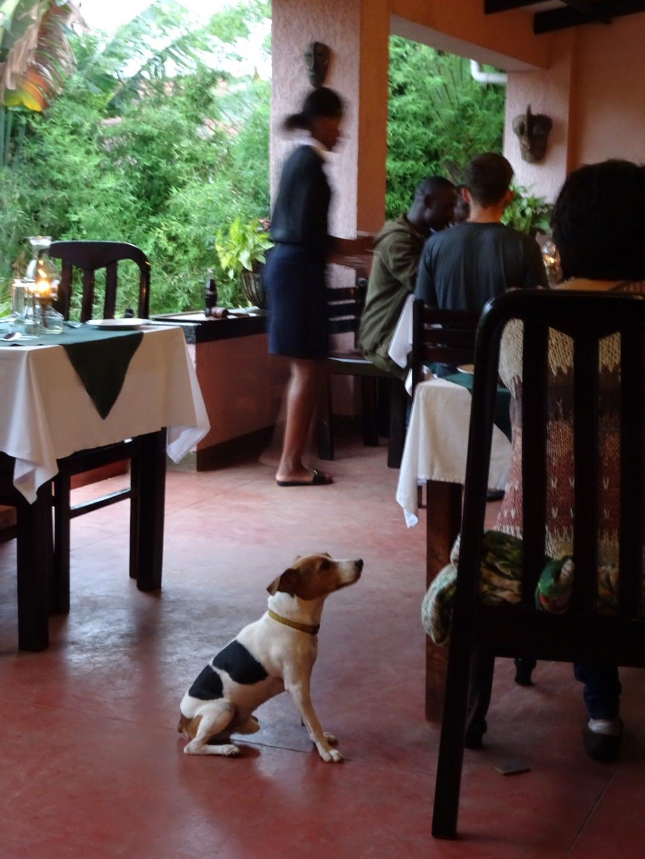 dining in uganda