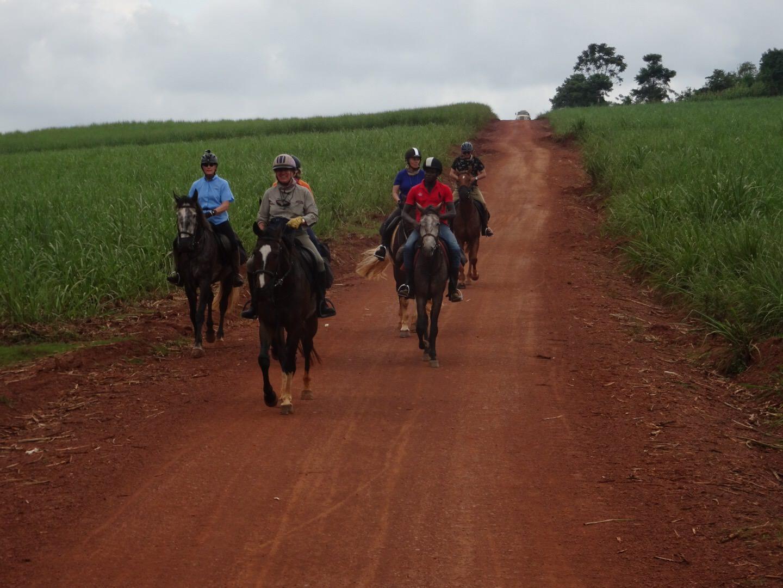uganda, Uganda – Schools, Sugar and Tea, In The Saddle