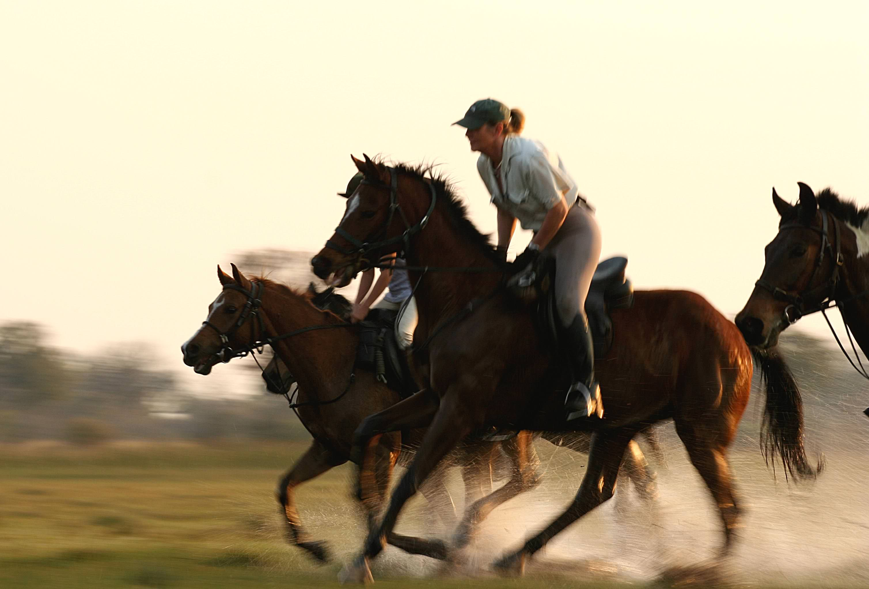 Exhilarating canters across the plains