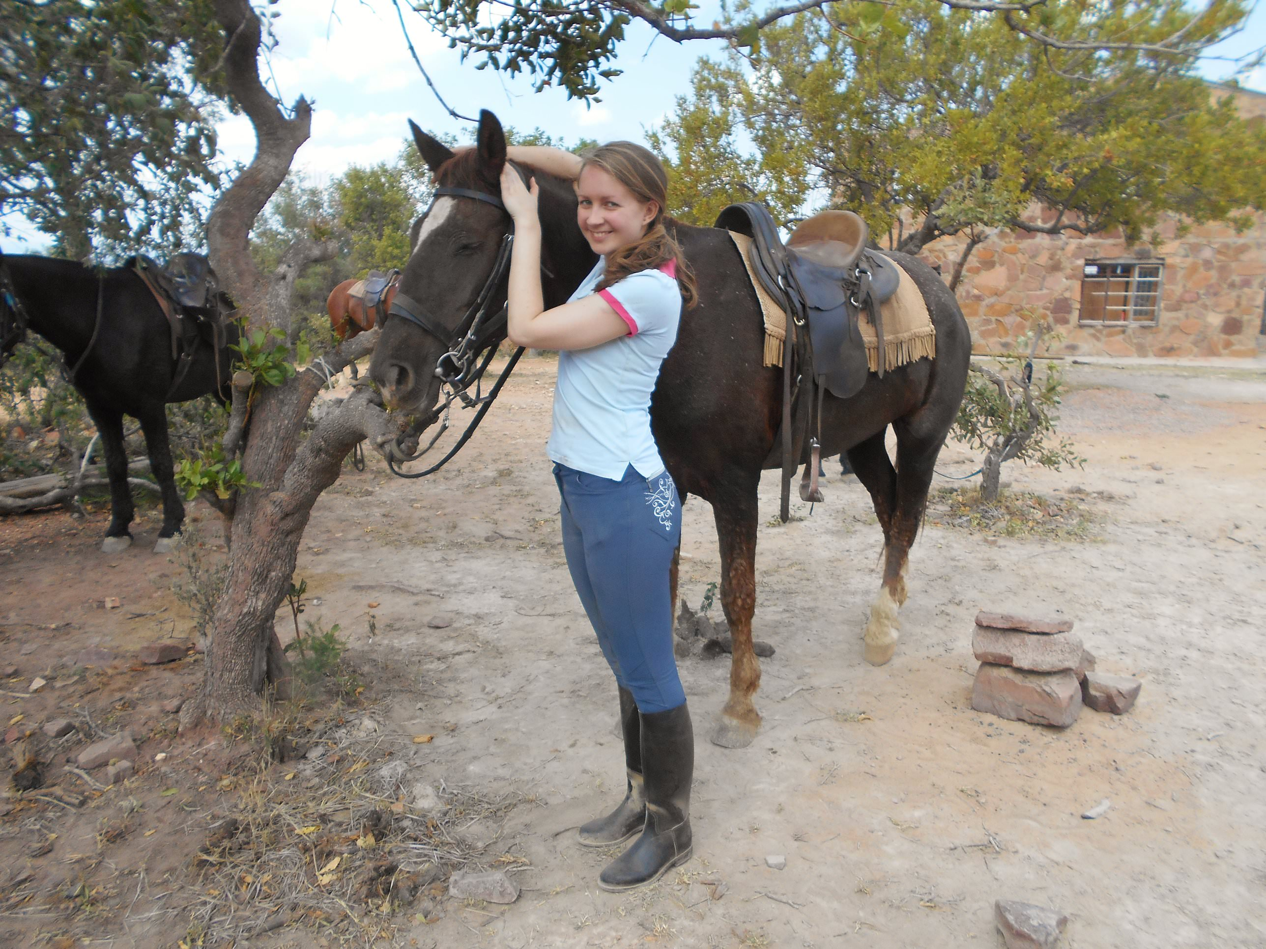 Lauren, with one of the much-loved horses at Ant's Hill