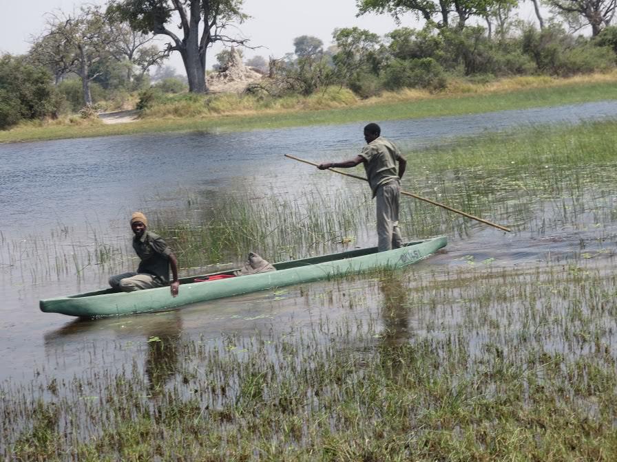 Pic: Gliding along in a mokoro