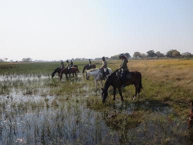 Pic: Splashing through the delta was great fun