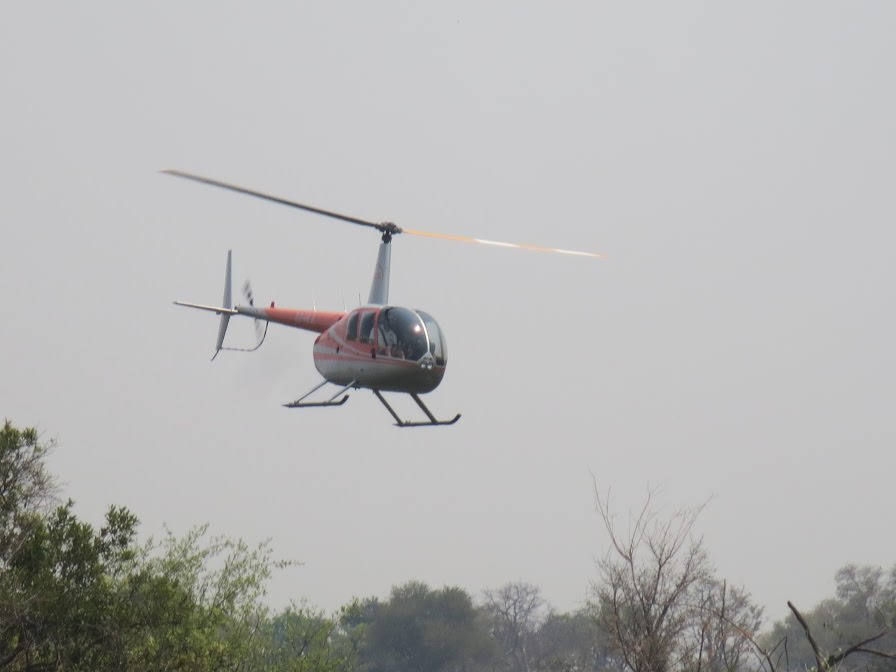 Pic: Flying into camp by helicopter - the only way to travel!