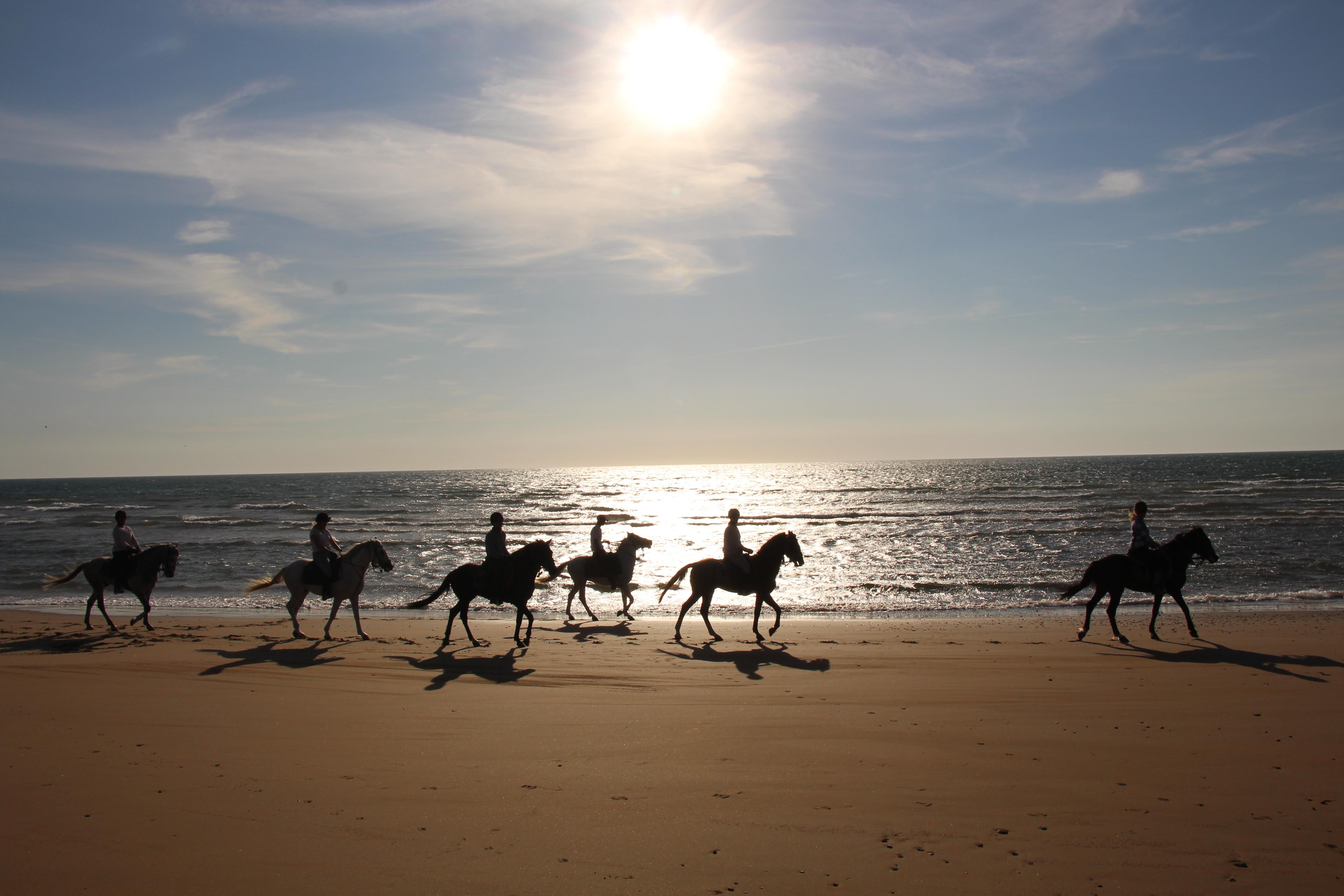 beach riding in morocco
