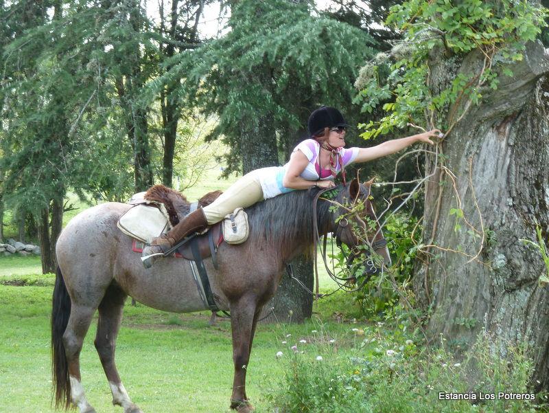 easter egg hunt on horseback