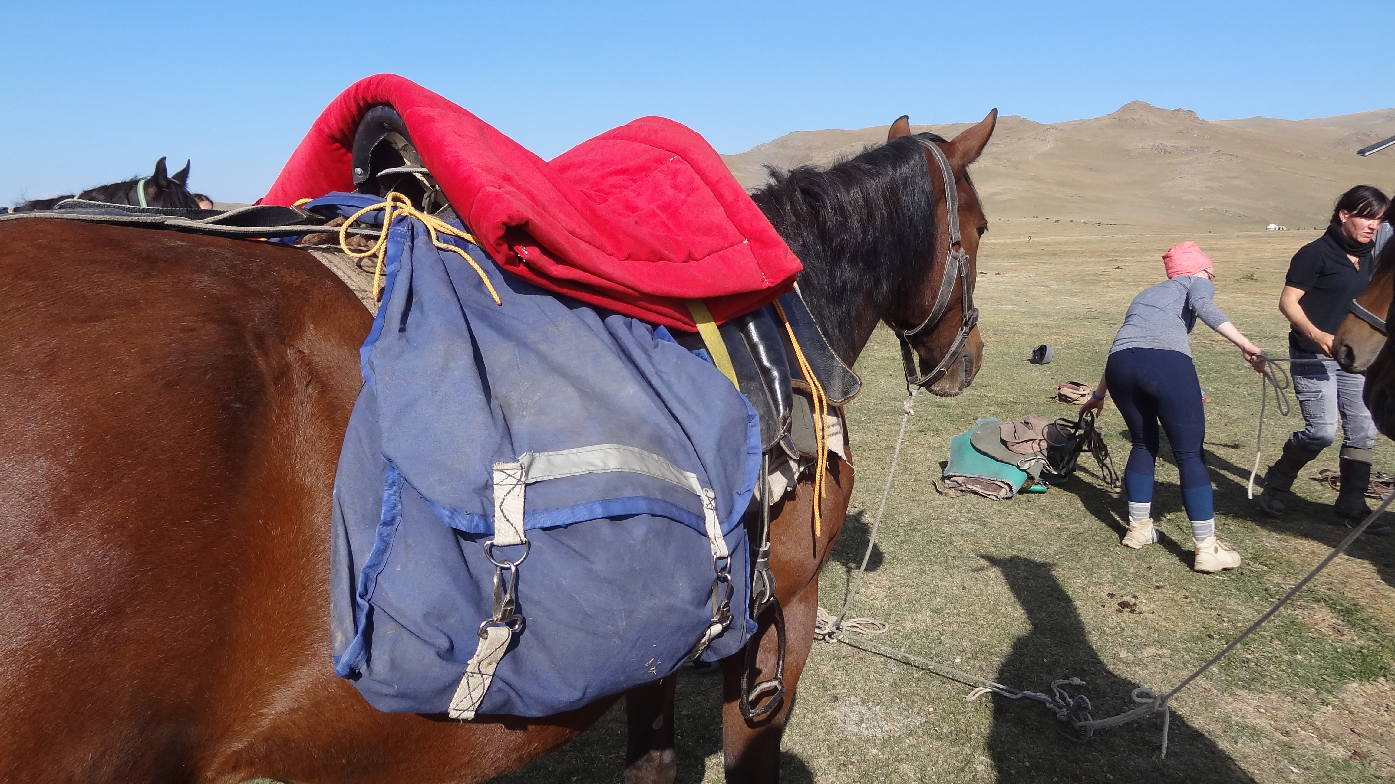 kyrgyzstan trail riding