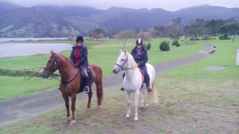 horses azores