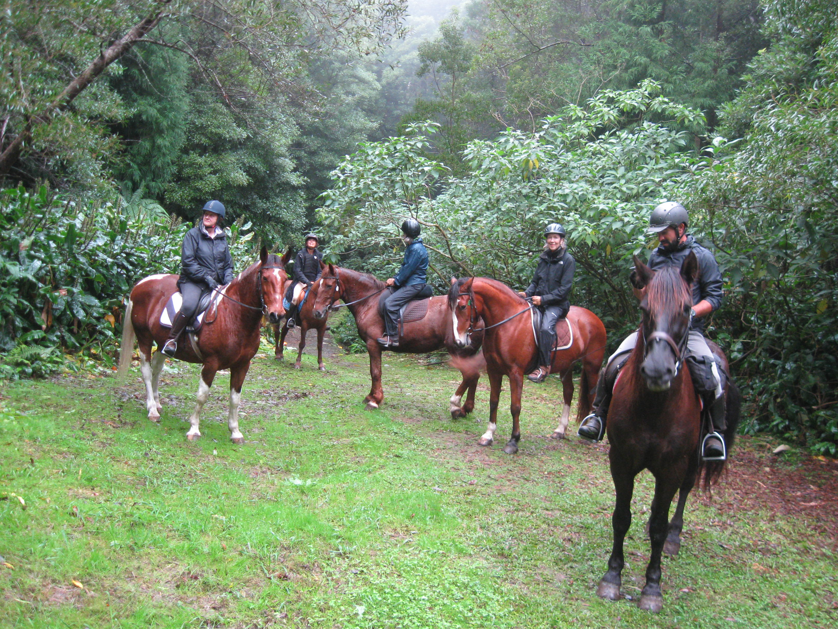 horse riding on the azores