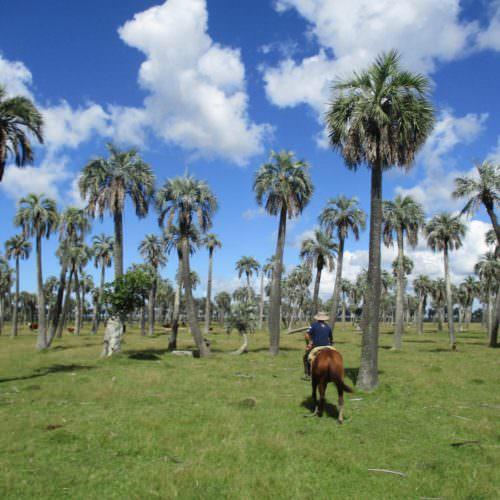 Riding in Uruguay