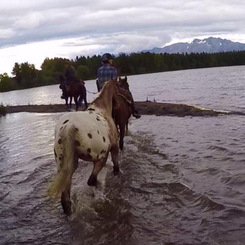 Tsylos riding