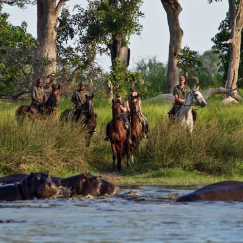 Rijden in Kujwana Camp in de Okavango Delta met PJ en Barney