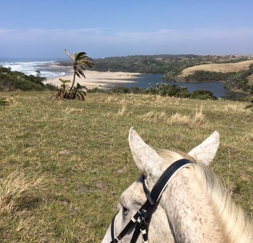 Riding on the Wild Coast