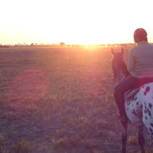 The Kalahari Riding Safari in the Makgadikgadi salt pans of Botswana. Sunset, horses, zebra.