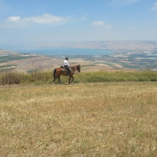 Galilee riding