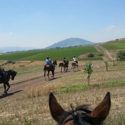 Israel riding