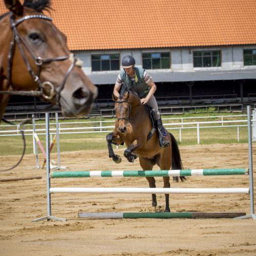 Galiny jumping