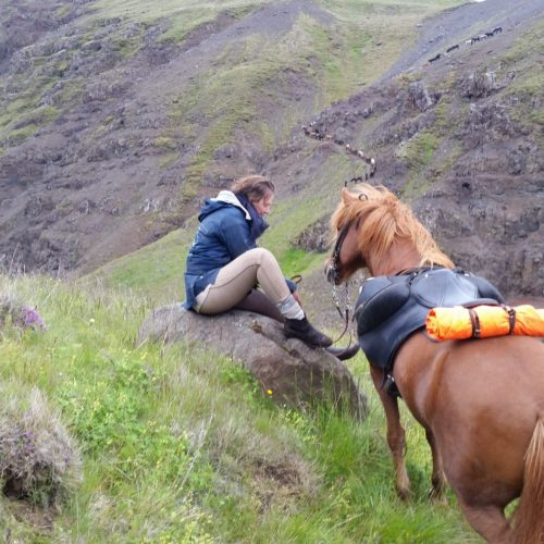 Iceland riding