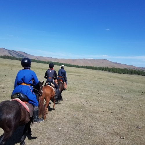 The Ger trail in Mongolia