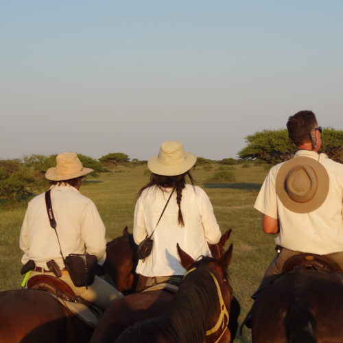 The Kalahari Riding Safari takes you into the Makgadikgadi salt pans of Botswana. Horses at sunset.