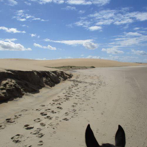 Beach riding Uruguay