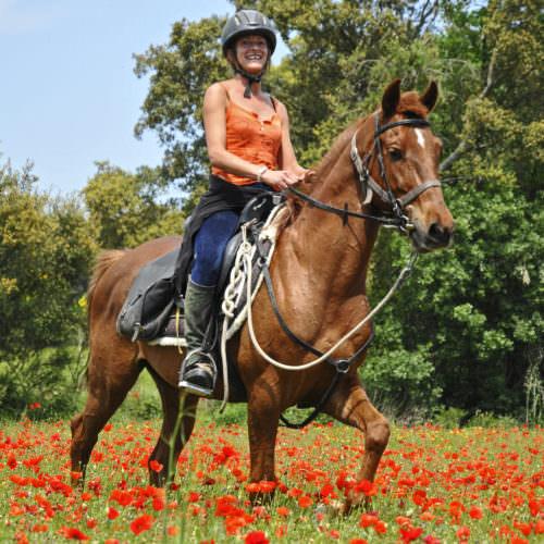 Riding through poppies
