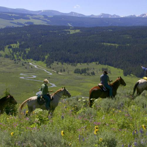 Riding through the pastures