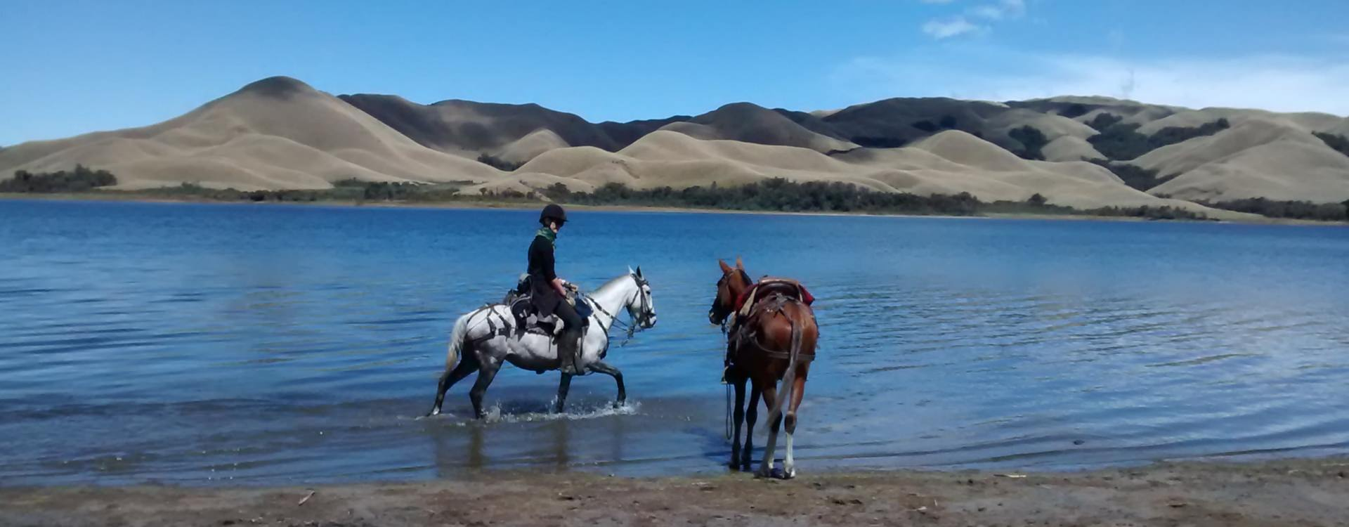 Riding in the Ecuadorian Andes