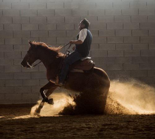 Neck reining
