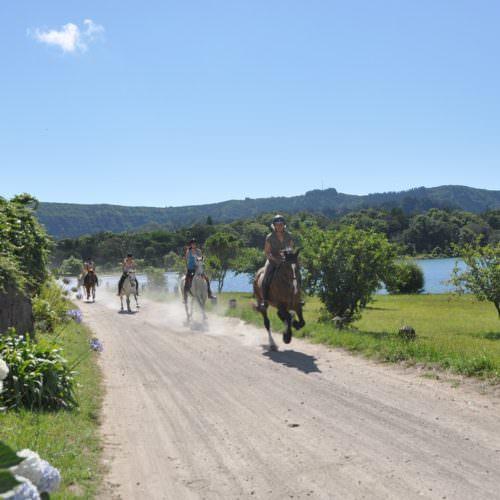 azores, sete cideades, horse riding