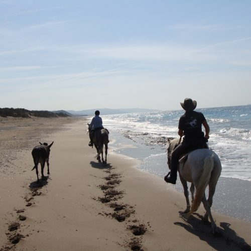 Beach riding in Rhodes