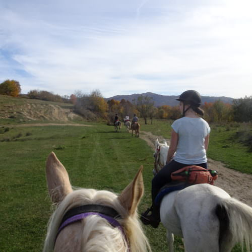 A nice mix of paces. Riding holidays in Transylvania with In The Saddle.