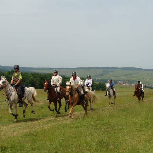 Lots of fun riding. Riding holidays in Transylvania with In The Saddle.