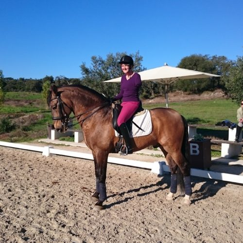 Dressage lesson at Monte Velho