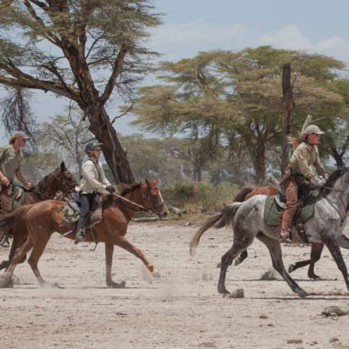 Tanzania cantering