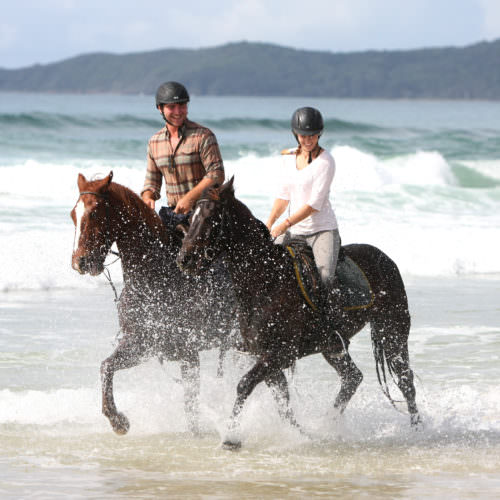 Beach riding holidays. Horses cantering through the surf