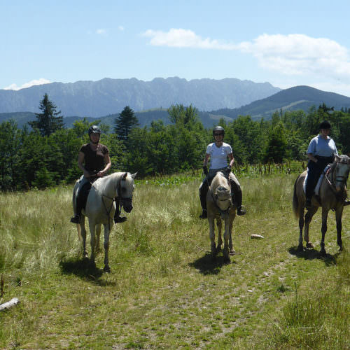 Views of the mountains. Riding holidays in Transylvania with In The Saddle.