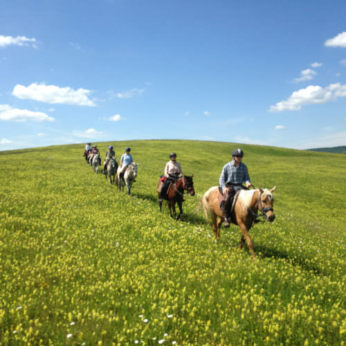 Riding over the hills. Riding holidays in Transylvania with In The Saddle.