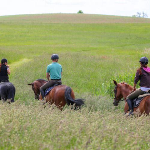 Galiny riding