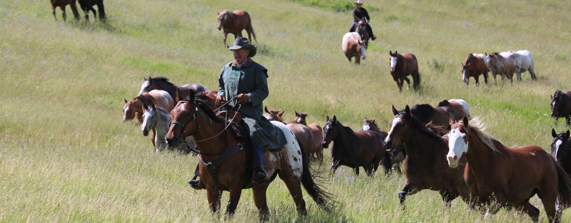 Nine Quarter Circle Ranch, Montana