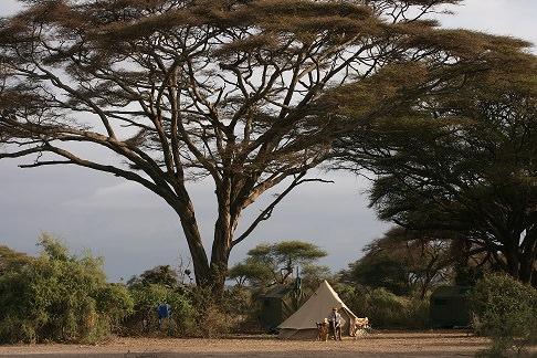 camping in Tanzania